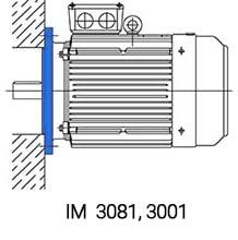 IM3081 монтаж 90кВт 750 об/мин с фланцем